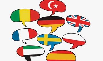 На каждый миллион человек приходится один язык