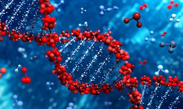Гены влияют на число согласных в языках